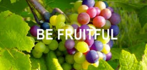 SECRETS OF FRUITFULNESS